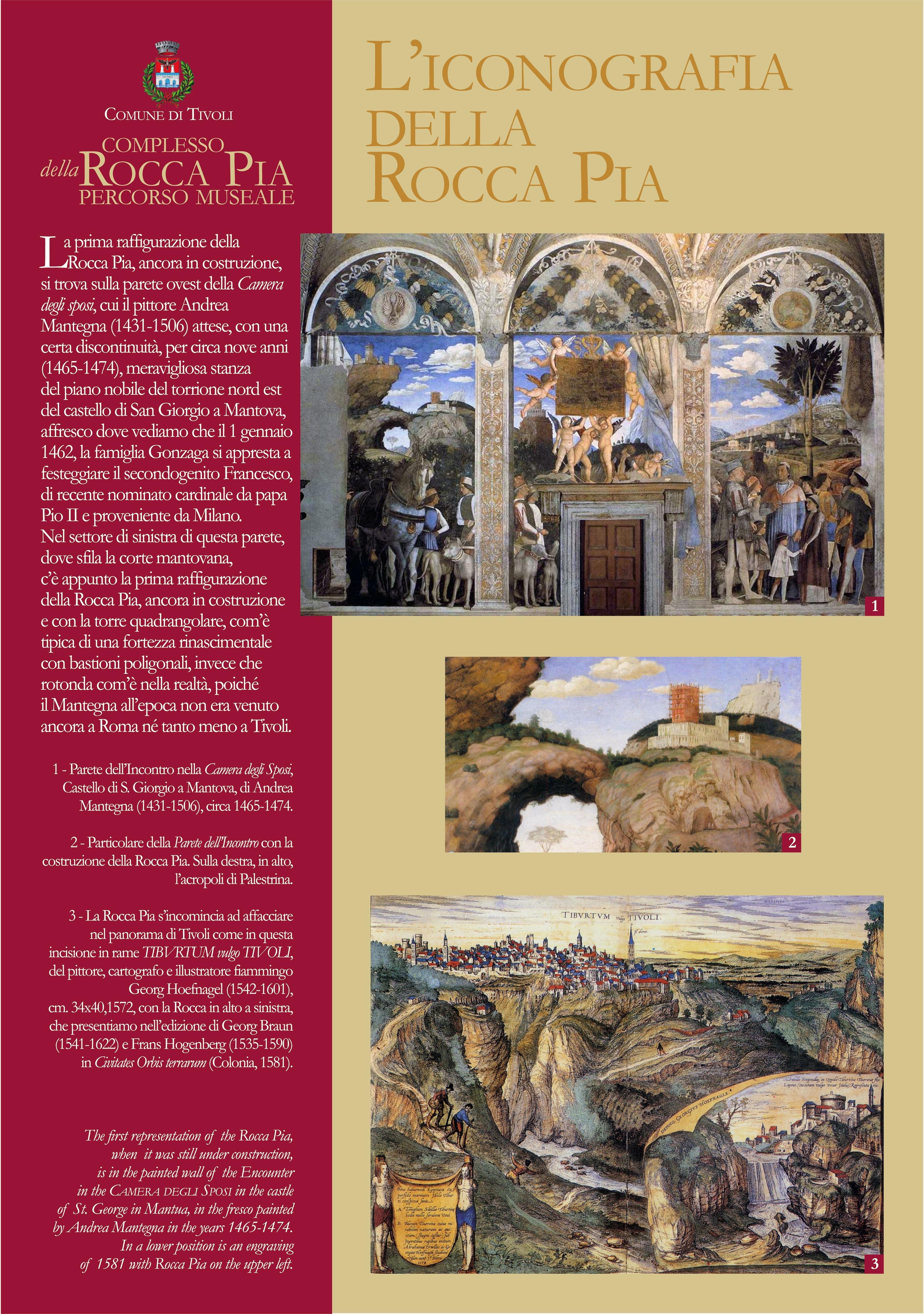 Pio II 1 di 9