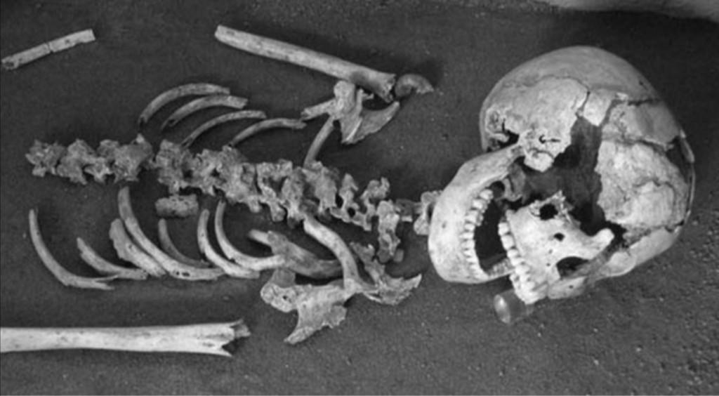 Lo scheletro esaminato
